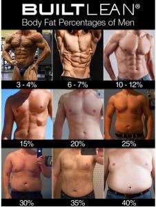 体脂肪率別写真2