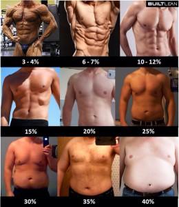 体脂肪率写真